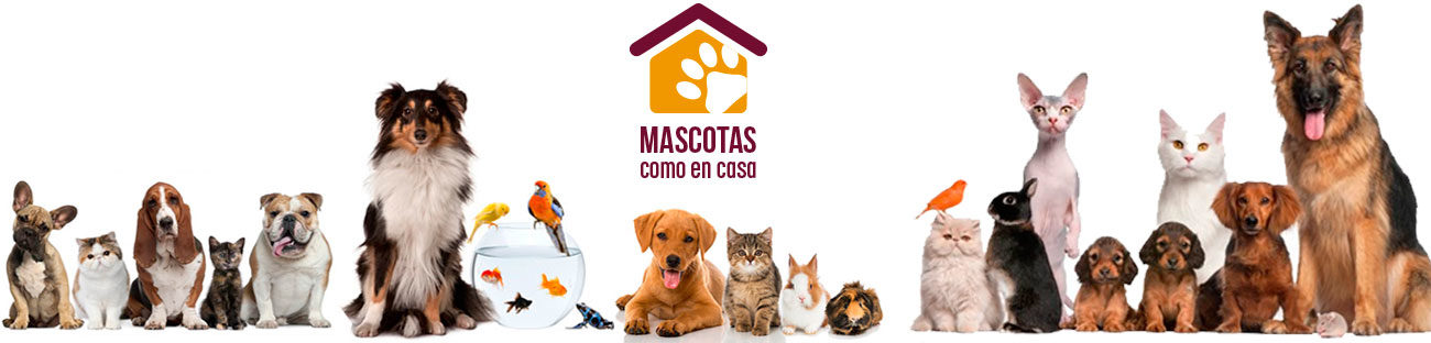 Mascotas como en casa